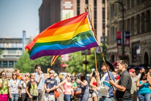 Waving_Rainbow_Flag_-_Twin_Cities_Pride_Parade_(9178644107)