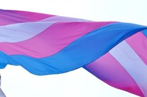 trans-flag